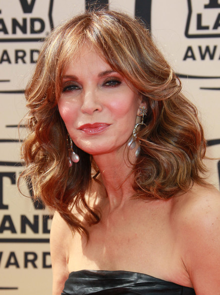 8th Annual TV Land Awards - Arrivals [hair,hairstyle,face,blond,chin,brown hair,shoulder,hair coloring,long hair,layered hair,arrivals,jaclyn smith,tv land awards,culver city,california,sony studios]