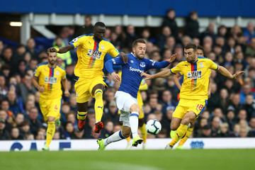 James McArthur Everton FC vs. Crystal Palace - Premier League