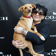 Joan Grande Coach and Toulouse Grande Celebrate the Coach Pups Campaign By Hosting An Event In New York, July 28th