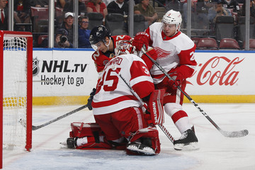 Joe Hicketts Detroit Red Wings v Florida Panthers