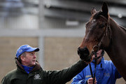 Trainer Jonjo O'Neill (L) poses with Don't Push It during a John Smith's stable visit at Jackdaws Castle on January 19, 2011 in Cheltenham, England.