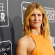 Laura Dern 25th Annual Critics' Choice Awards - Red Carpet