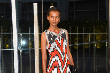Liya Kebede 2015 CFDA Fashion Awards - Cocktails