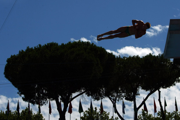 Matthew Mitcham - Diving Day Five - 13th FINA World championships