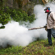 January 28: Zika Outbreak Is Official