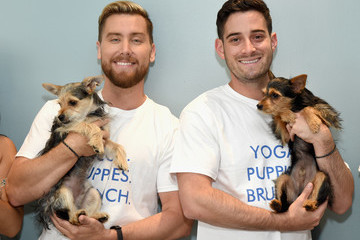 Michael Turchin Natural Balance Pet Foods Announce New Formula With Lance Bass and Downward Dogs - Literally