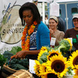Sunflowers for the First Lady