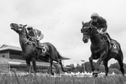 Image has been converted to black and white.) Smiling Assassin ridden by Lisa Allpress leads ahead of  Oligarch ridden by Chris Johnson in Race 3 Cashmere Estate - Live Without Compromise Premier during New Zealand Cup and 1000 Guineas Day at Riccarton Park Racecourse on November 17, 2018 in Christchurch, New Zealand.