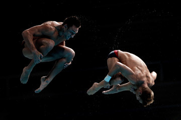 Patrick Hausding Diving - 16th FINA World Championships: Day Four