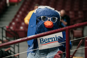 St. Paul resident Meg Lehman wears a homemade bird costume at a rally for Democratic presidential candidate and Senator (I-VT) Bernie Sanders at the University of Minnesotas Williams Arena on November, 3, 2019 in Minneapolis, Minnesota. Sanders was joined at the rally by Democratic Representative Ilhan Omar, who praised the Senator's policy proposals of comprehensive immigration reform and support for unions.