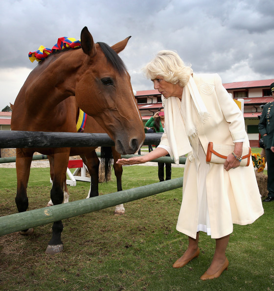 Camilla, Duchess of Cornwall meets horses as she visits Escuela de Cabelleria del Ejercito (Military Academy) on October 30, 2014 in Bogota, Colombia. The Royal Couple are on a four day visit to Colombia as part of a Royal tour to Colombia and Mexico. After fifty years of armed conflict in Colombia the theme for the visit is Peace and Reconciliation.