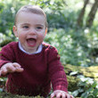 Prince Louis Prince Louis 1st Birthday - Official Photographs Released