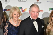Camilla, Duchess of Cornwall and Prince Charles, Prince of Wales attend a reception and dinner for supporters of The British Asian Trust at Natural History Museum on February 2, 2016 in London, England.