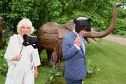 Camilla, Duchess of Cornwall and Prince Charles, Prince of Wales hold face masks as they host a reception for the Elephant Family Animal Ball at Clarence House on June 13, 2019 in London, England. Elephant Family is an international NGO dedicated to protecting the Asian elephant from extinction in the wild.