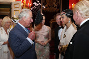 Prince Charles, Prince of Wales meets guests at a reception hosted by himself and Camilla, Duchess of Cornwall (L) for the Elephant Family Animal Ball at Clarence House on June 13, 2019 in London, England. Elephant Family is an international NGO dedicated to protecting the Asian elephant from extinction in the wild.