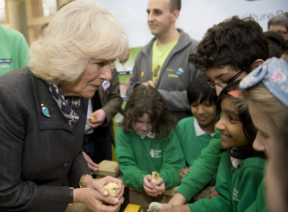 Camilla, Duchess of Cornwall holds holding a three day-old Pekin Bantam chick talking to children from Hargrave Park school during The Edible Garden Show at Alexandra Palace on March 28, 2014 in London, England.