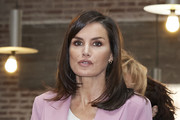 Queen Letizia of Spain attends a meeting with APRAMP (Prostitution Women Association) on March 06, 2020 in Madrid, Spain.