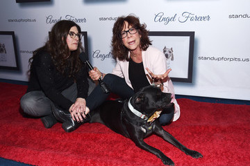 Rebecca Corry Mindy Sterling Kaley Cuoco Hosts 9th Annual Stand Up For Pits