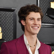 Shawn Mendes 62nd Annual GRAMMY Awards – Arrivals