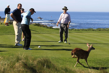 Harris Barton AT&T Pebble Beach National Pro-Am - Round Two