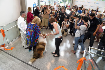 Wallis Annenberg Grand Opening of the Wallis Annenberg PetSpace