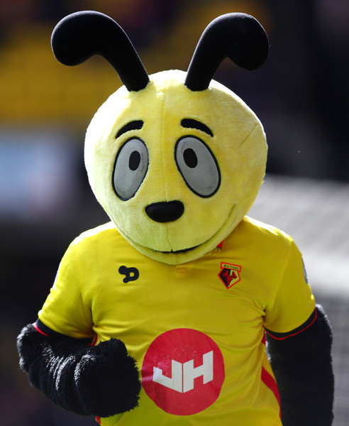 Harry the Hornet