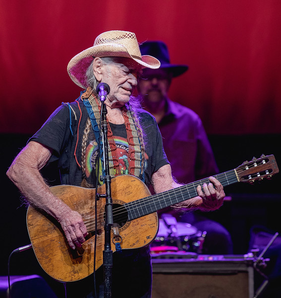Willie Nelson And Family In Concert