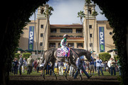Arrogate # 8, with Mike Smith up in the paddock before the TVG Pacific Classic at Del Mar Thoroughbred Club, on August 19, 2017 in Del Mar, California.