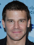 David Boreanaz Rachel Uchitel rumored