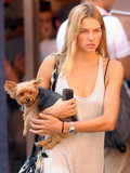 Which celebrity has the cutest pet?