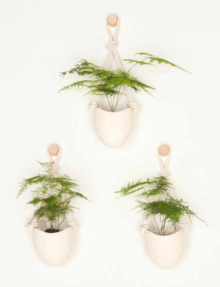 The Prime Spot For Potted Plants That You May Have ... on