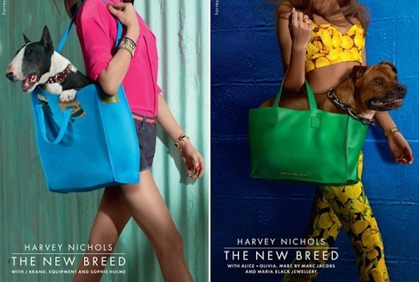 Harvey Nichols's Furry Campaign Stars, Alicia Keys's Ultimate Fashion Don't, and More!