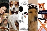 The Top 10 Dogs from TV Sitcoms