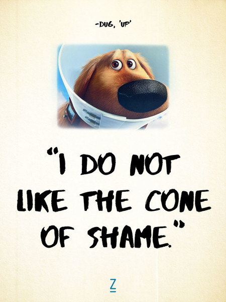 From \'Up\' - Pixar Movie Quotes That Will Make you Laugh, Cry ...