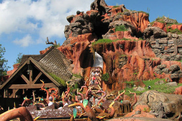 Which Disneyland Ride Are You?