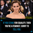 On the Meaning of 'Feminism'...