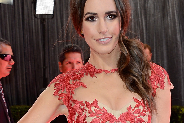 Louise Roe's Sexy Embroidered Tulle Monique Lhuillier Gown at the 2013 Oscars [PHOTOS]