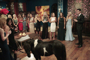 The Premiere of 'The Bachelor' Featured a Unicorn, a Pony, and Ben Higgins
