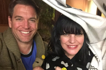 'NCIS' Actresses Support Michael Weatherly After His Sexual Harassment Claims