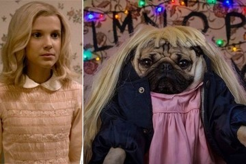 We Really Wish This Amazing 'Stranger Things' Parody with Pugs Was Real