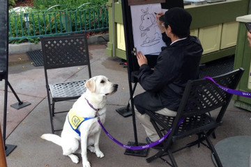 This Service Dog Getting His Caricature Drawn at Disneyland Is Your Feel-Good Moment of the Day