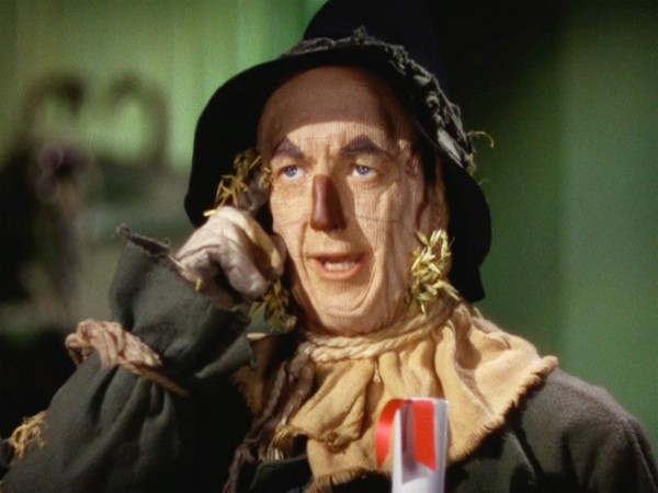 Image result for wizard of oz scarecrow