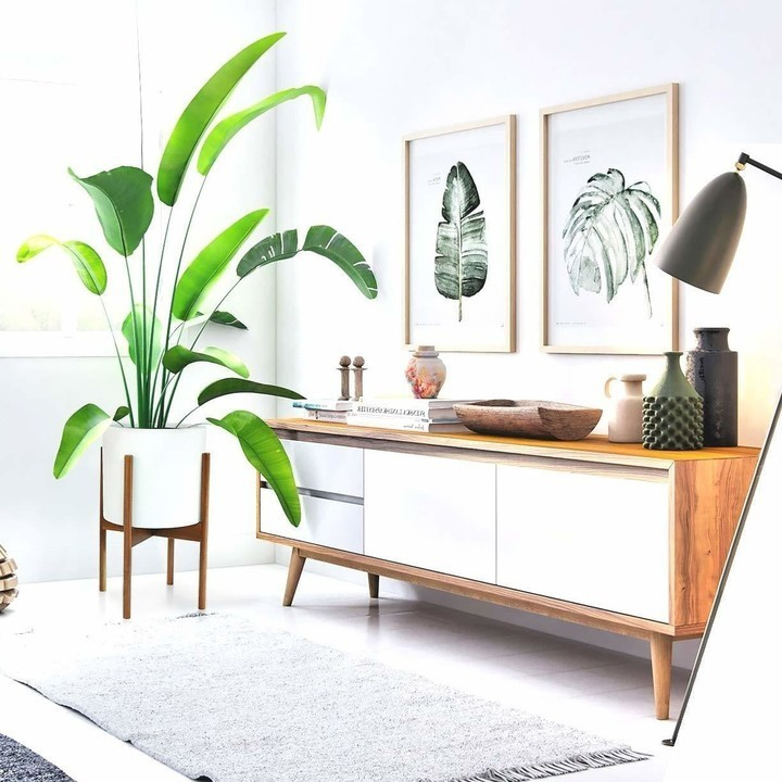 Make Your Small Living Room Chic With These Decorating Ideas Small Spaces Lonny