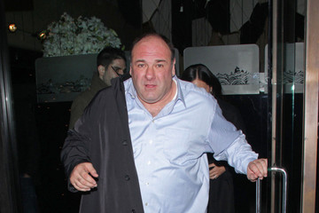Mr Chow James Gandolfini has  passed away at the age of 51 in Italy after reportedly suffering a heart attack