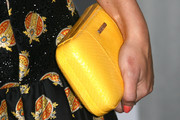 Alyson Michalka Hard Case Clutch