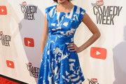 Kate Micucci Print Dress