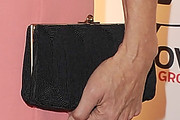 Mimi Rogers Hard Case Clutch