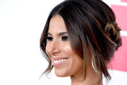 Roselyn Sanchez Braided Updo