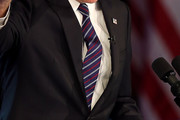 Mitt Romney Striped Tie