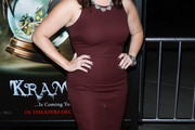 Allison Tolman Form-Fitting Dress